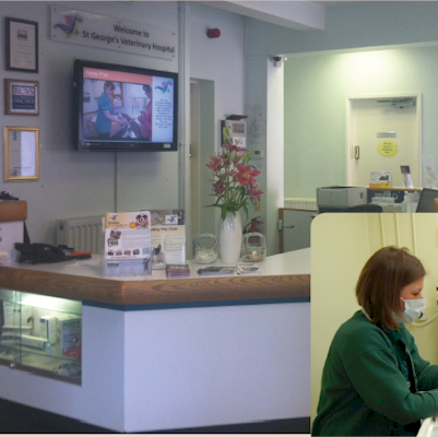 Repeat Digital Signage at Veterinary practices